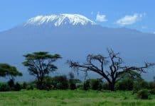 5 choses inoubliables à faire lors d'un voyage en Tanzanie